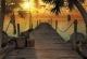 Фотообои Komar Treasure Island 8-918 (368x254) -