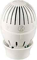 Головка термостатическая Giacomini R470X001 (с датчиком) -