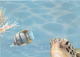 Элемент панно Березакерамика Лазурь Морской мир 7 бирюзовый (250x350) -