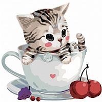 Картина по номерам Picasso Котенок в чашке №3 (PC3030003) -