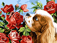 Картина по номерам Picasso Аромат роз (PC3040033) -