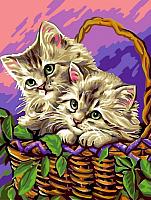 Картина по номерам Picasso Котята в лукошке (PC3040047) -