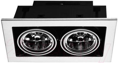 Точечный светильник Arte Lamp Technika A5930PL-2SI