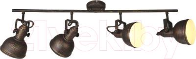 Спот Arte Lamp Martin A5215PL-4BR