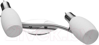 Спот Arte Lamp Volare A4590AP-2SS