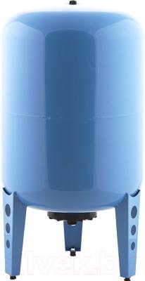 Гидроаккумулятор Джилекс 100 ВП / 7106