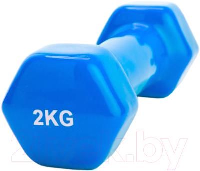 Гантель Bradex SF 0162 (2кг, синий)