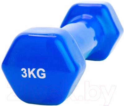 Гантель Bradex SF 0164 (3кг, синий)