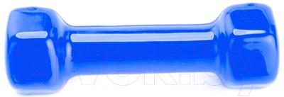 Гантель Bradex SF 0168 (5кг, синий)