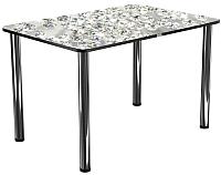 Обеденный стол Васанти Плюс Плюс ПРФ 120x80 (хром/117) -