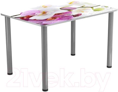 Обеденный стол Васанти Плюс ПРФ 120x80 (алюминий/94)