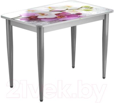 Обеденный стол Васанти Плюс ПРФ 110x70/3К/ОА (алюминий/94)
