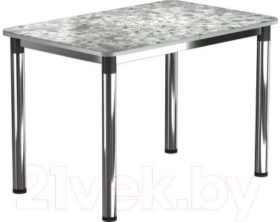 Обеденный стол Васанти Плюс Васанти-1 100x60/ОЧ (черный/хром/117)