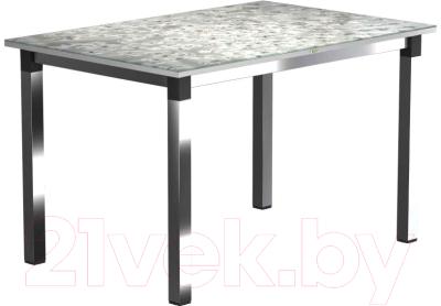 Обеденный стол Васанти Плюс Васанти-2 120x80/ОЧ (черный/хром/117)