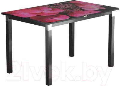 Обеденный стол Васанти Плюс Васанти-2 100x60/ОЧ (черный/хром/71)
