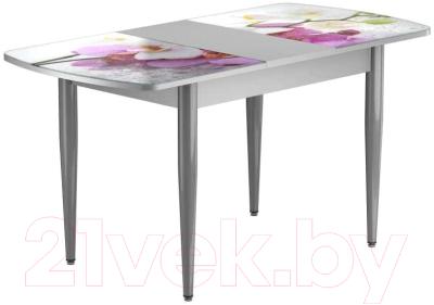 Обеденный стол Васанти Плюс БРФ 110/142x70/1Р/ОА (алюминий/94)