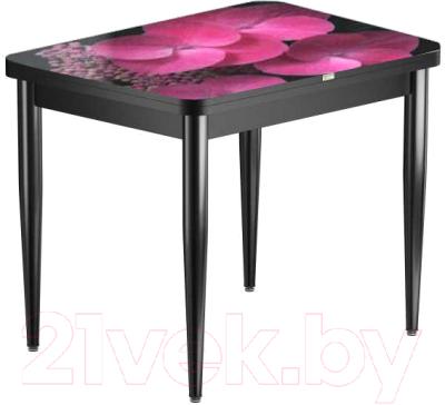 Обеденный стол Васанти Плюс ПРФ 80x60/120 РШ/к/ОЧ (черный/71)