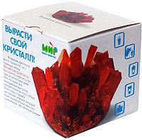 Набор для выращивания кристаллов КАРРАС Волшебные кристаллы. Маленький (004) -