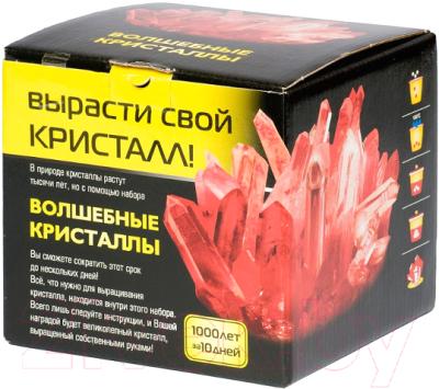 Набор для выращивания кристаллов КАРРАС Волшебные кристаллы (007)