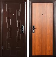 Входная дверь Промет Новосел (95x205, левая) -