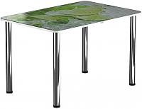 Обеденный стол Васанти Плюс ПРФ 120x80 (хром/55) -