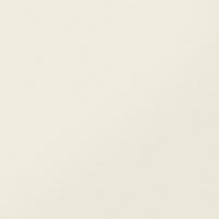 Плитка Керамика будущего Моноколор белый CF 101 MR (600x600) -