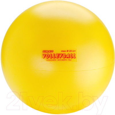 Мяч волейбольный Gymnic Volleyball 80.90