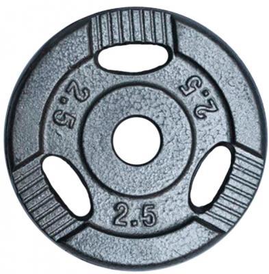 Диск для штанги No Brand K3-2.5kg (окрашенный) - общий вид