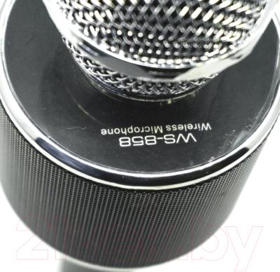 Микрофон Wise WS-858 (черный металлик)