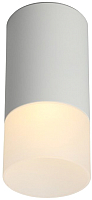 Потолочный светильник Omnilux Lucido OML-100609-01 -