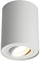 Потолочный светильник Omnilux Pantaleo OML-101009-01 -