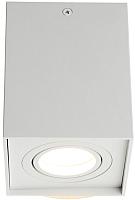 Потолочный светильник Omnilux Feletto OML-101109-01 -