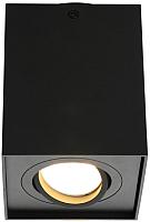 Потолочный светильник Omnilux Feletto OML-101119-01 -