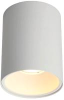 Потолочный светильник Omnilux Cariano OML-101209-01 -