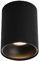 Потолочный светильник Omnilux Cariano OML-101219-01 -