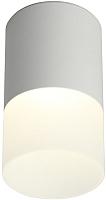 Потолочный светильник Omnilux Ercolano OML-100009-05 -