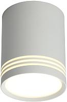 Потолочный светильник Omnilux Fortezza OML-100109-12 -