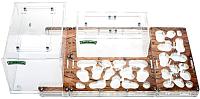 Муравьиная ферма AntHouse Bio Plus XL стартовый комплект (Wood) -
