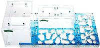 Муравьиная ферма AntHouse Bio Plus XL стартовый комплект (Sapphire) -