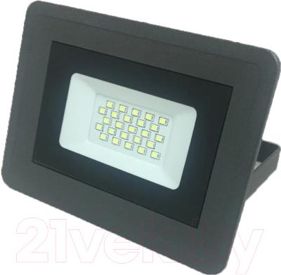 Прожектор Truenergy 20W 13002