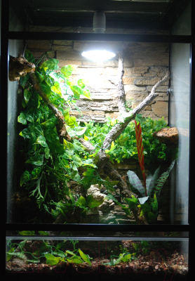 Лампа для террариума Lucky Reptile LED Sun Spot / LSS18