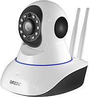 IP-камера Ginzzu HWD-2033A -