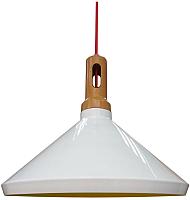Потолочный светильник Candellux Robinson 31-37671 -