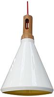 Потолочный светильник Candellux Robinson 31-37695 -