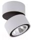 Точечный светильник Lightstar Forte Muro 213859 -