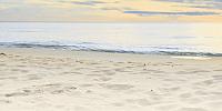 Элемент панно Golden Tile Sunrise Crema Marfil 2 (300х600, бежевый) -