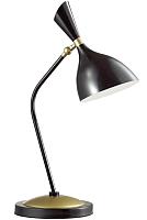 Настольная лампа Odeon Light Rasto 4665/1T -