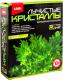 Набор для выращивания кристаллов Lori Зеленый кристалл / Лк-003 -