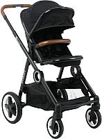 Детская прогулочная коляска Babyzz Dynasty (черный) -