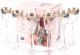 Набор рюмок Bohemia Crystal Angela 40600/43249/60 (6шт) -